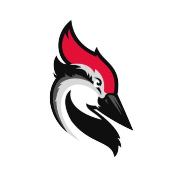 woodpecker alternative